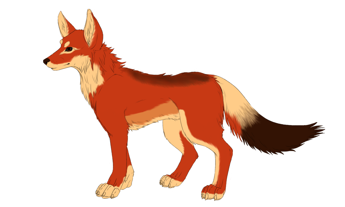 Wolf clipart orange. Ethiopian contest entry by