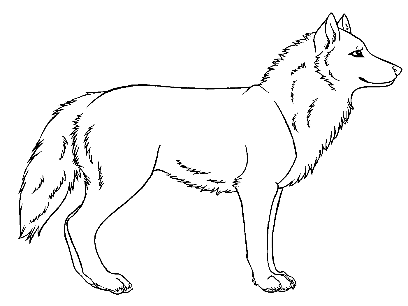 Wolf drawing gallery clip. Wolves clipart simple