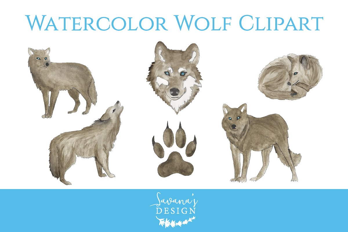 Wolves clipart watercolor. Wolf illustrations creative market