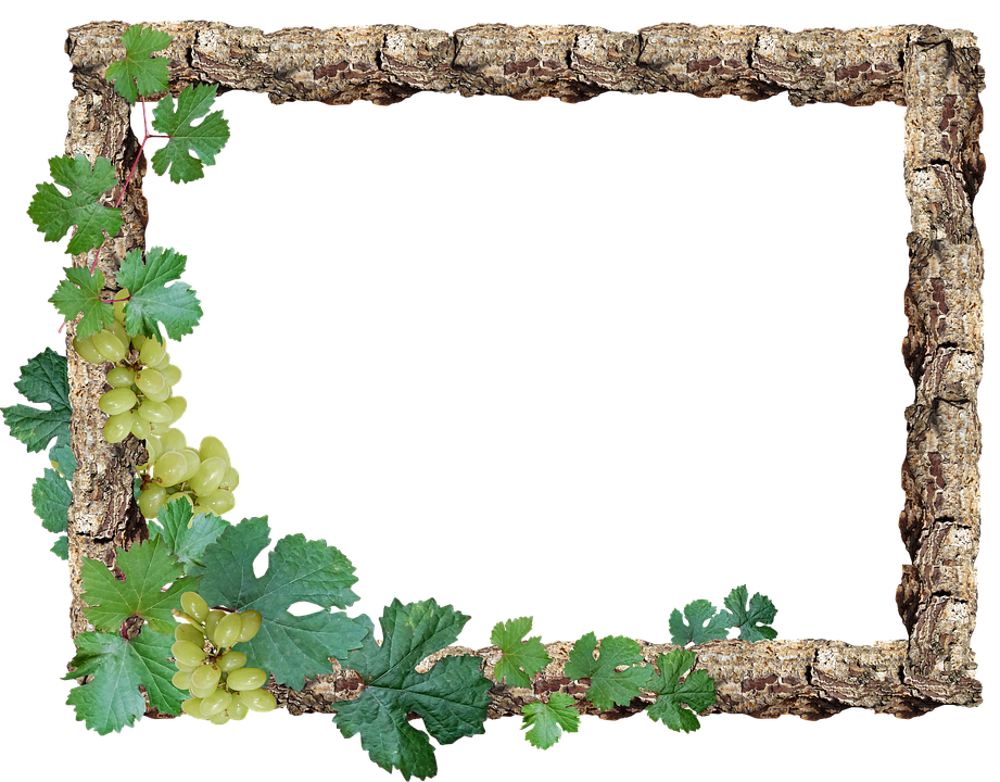 Rustic wood frame png. Free photo border grapes