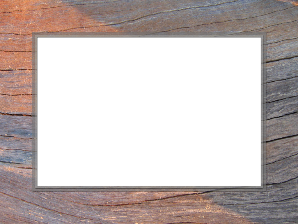 Presentation backgrounds set rectangle. Wood frame png