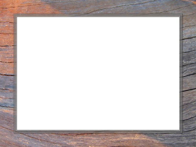 Presentation backgrounds set rectangle. Wood picture frame png