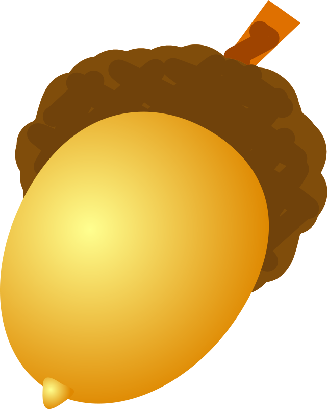 Woodland clipart acorn. Sunday school decor pinterest