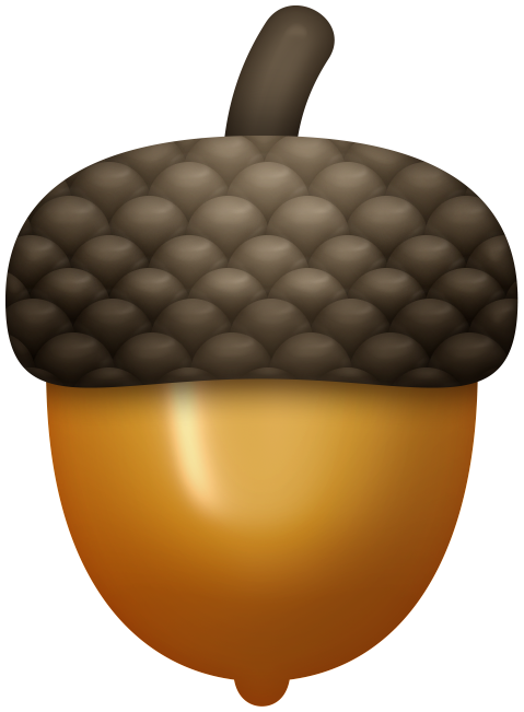 Autumn clip art alcohol. Woodland clipart acorn