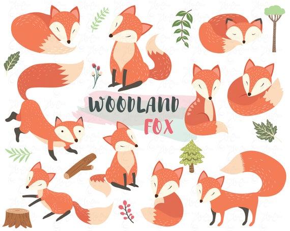 Woodland clipart adorable fox. Animal cute