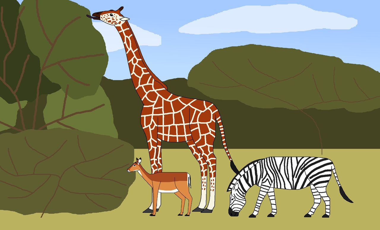 Grassland by wildandnaturefan on. Woodland clipart animal community