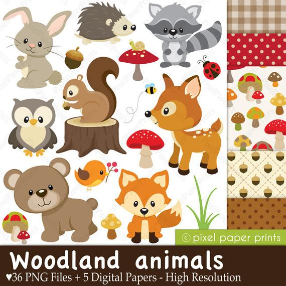Woodland clipart artwork. Animals clip art and