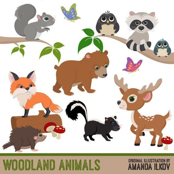 Premium animal vectors . Woodland clipart clip art