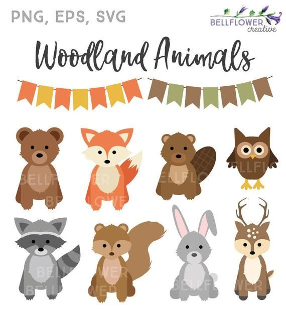 Animals svg . Woodland clipart cute fall animal