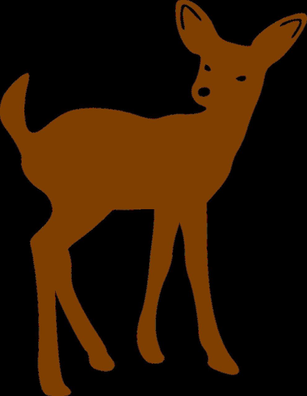 Woodland clipart fawn. Deer bambi brown mammal
