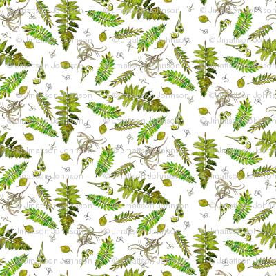 Woodland clipart green fern. Ferns in watercolor giftwrap