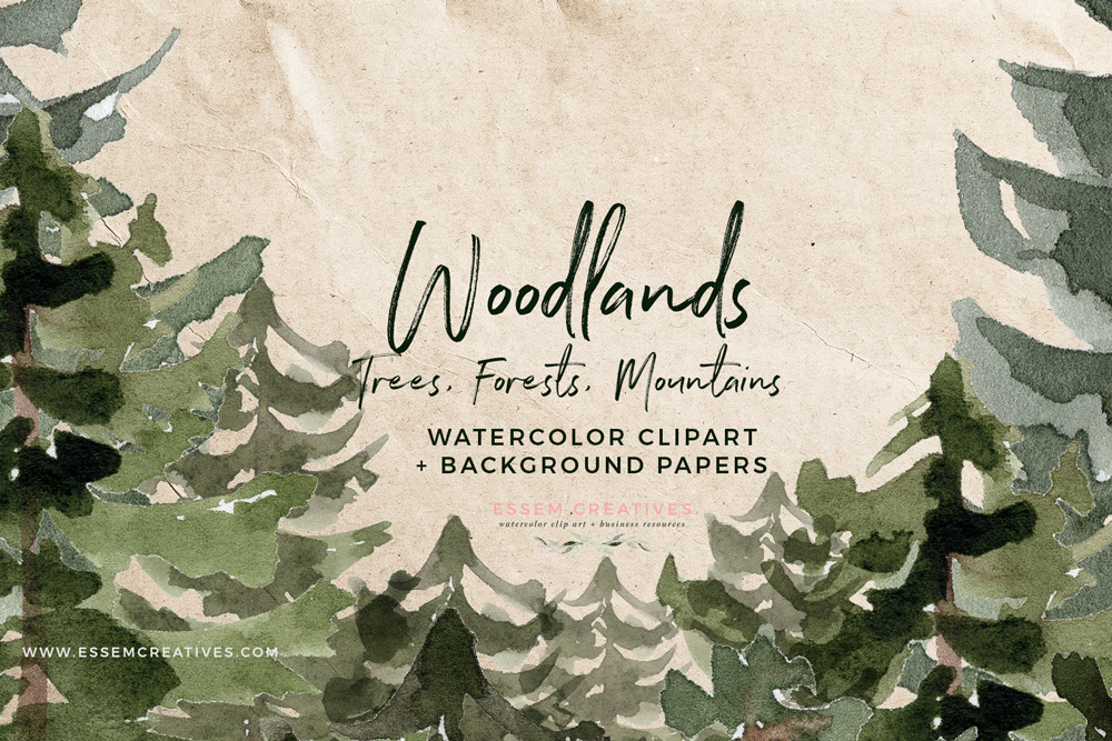 Rustic trees mountain pine. Woodland clipart greenery