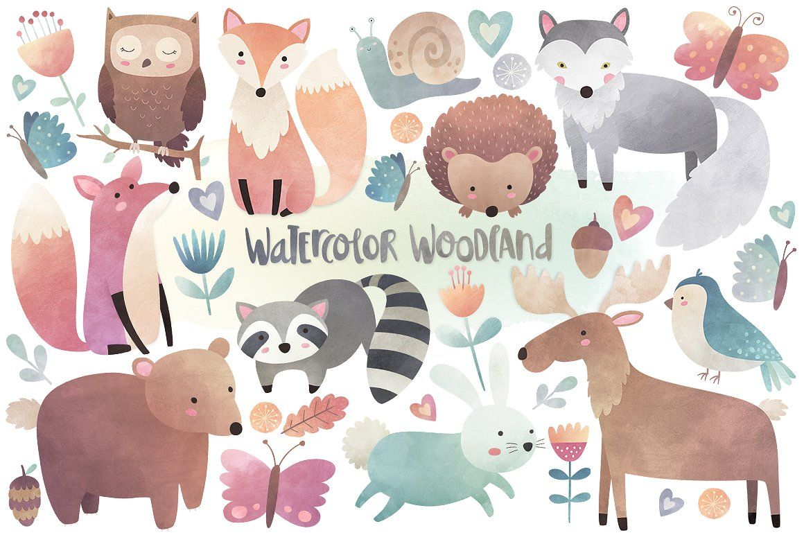 Woodland clipart nature animal. Watercolor animals