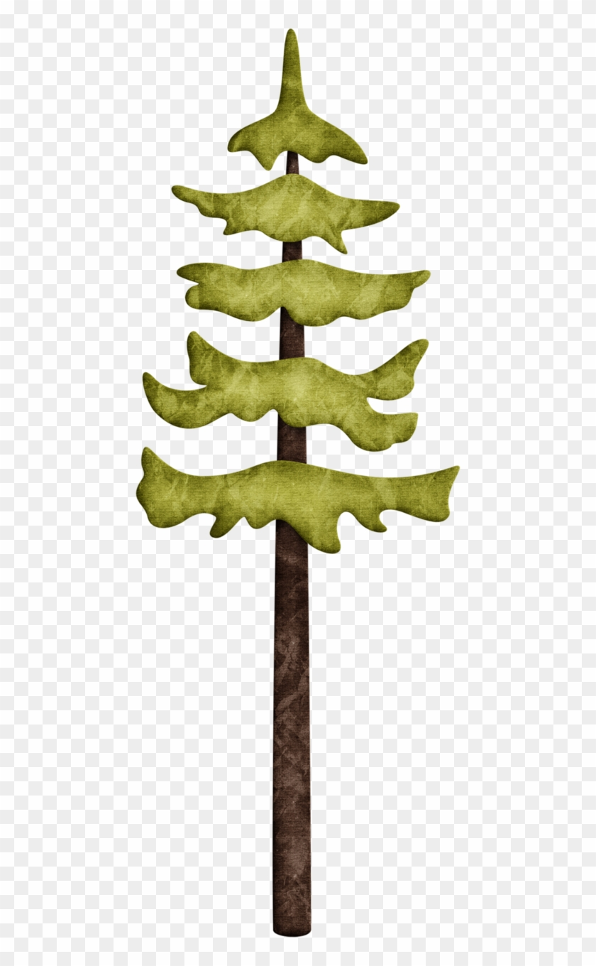 Woodland clipart pine tree. Trees hd png