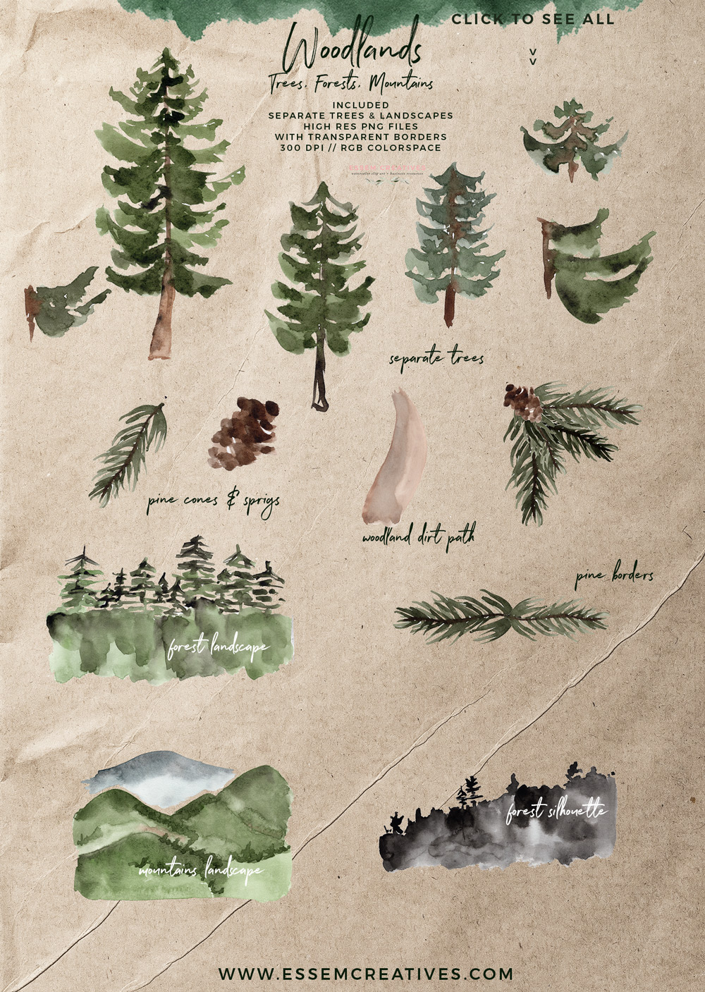 Rustic trees mountain forest. Woodland clipart pine tree