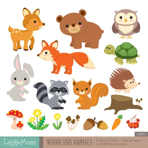 Animals digital and papers. Woodland clipart preschool
