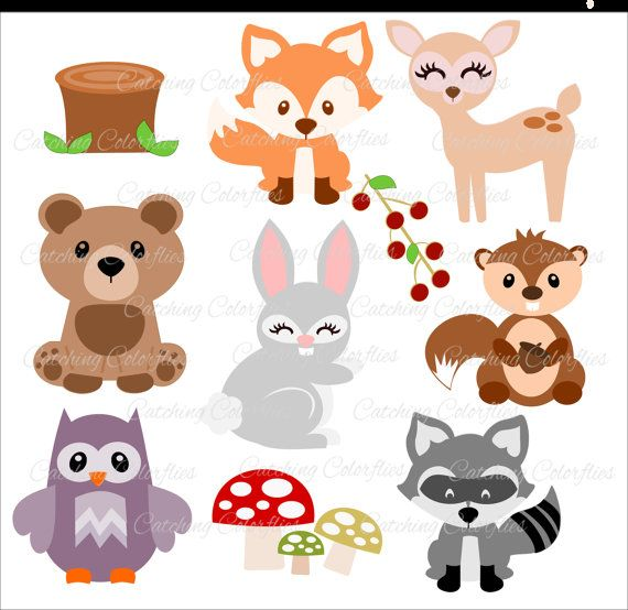 Woodland clipart preschool. Baby animal cut files