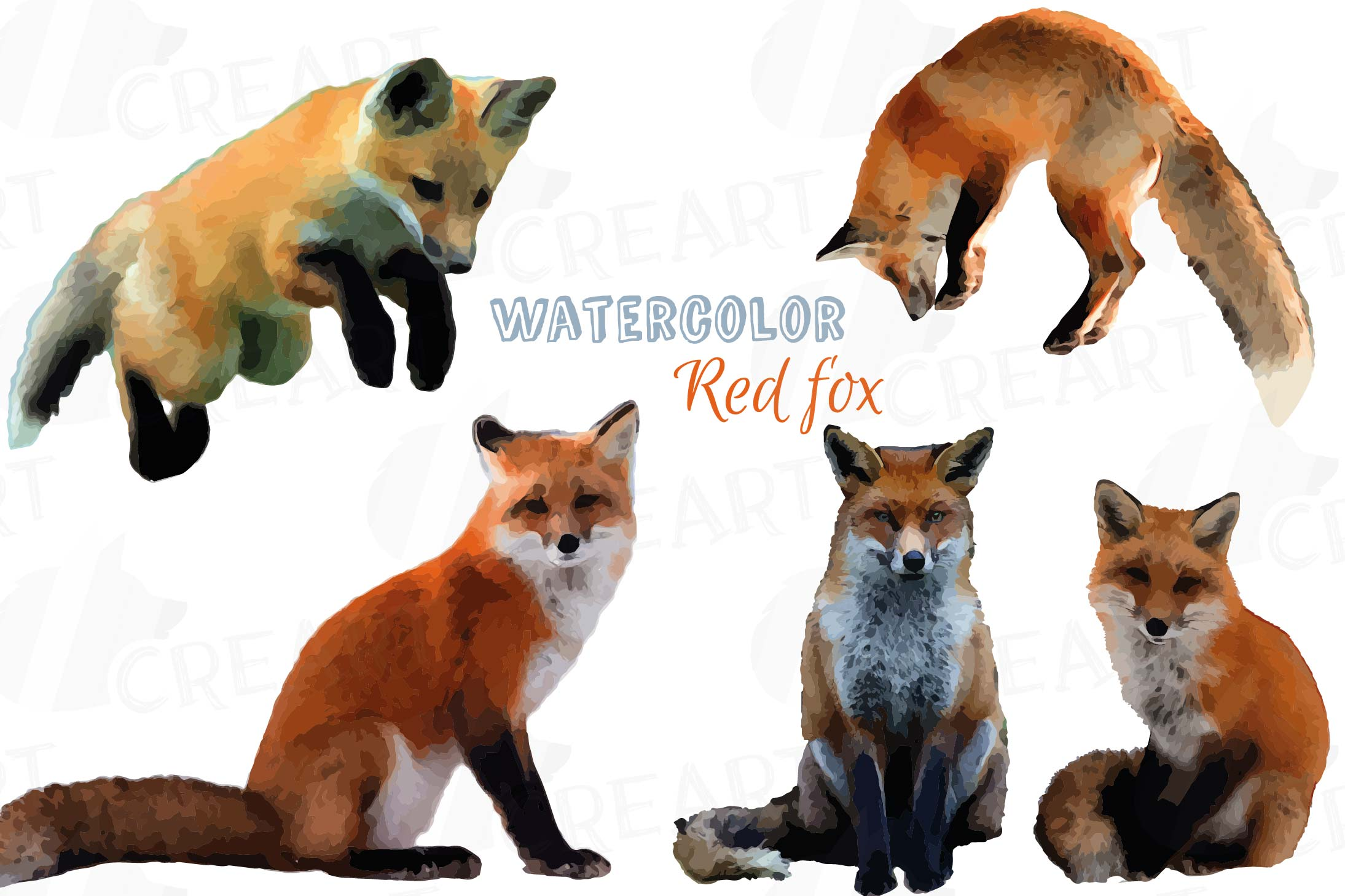 Watercolor clip art png. Woodland clipart red fox