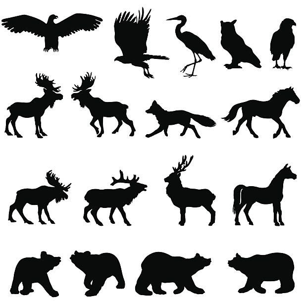 Woodland clipart stencil. Large animal silhouette set