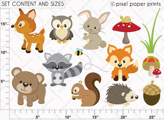 Animals clip art and. Woodland clipart template