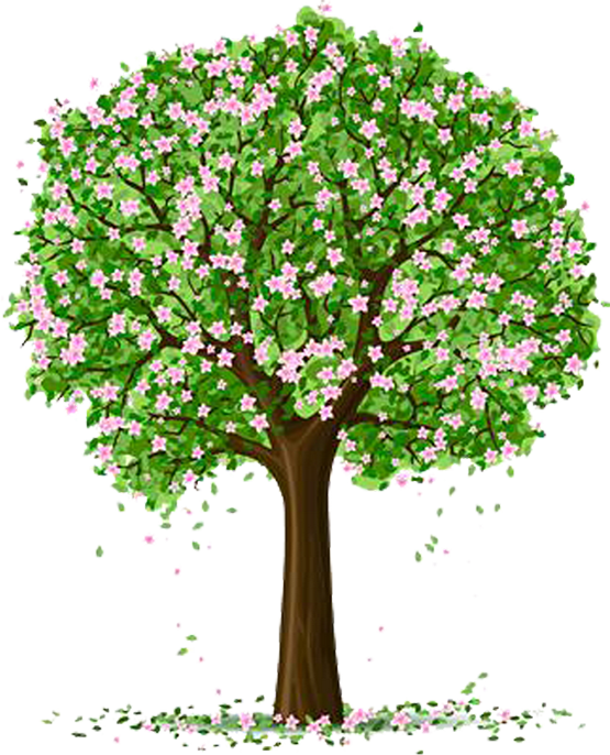 Woodland clipart tree growth. Tubes arbres arbustes feuillages