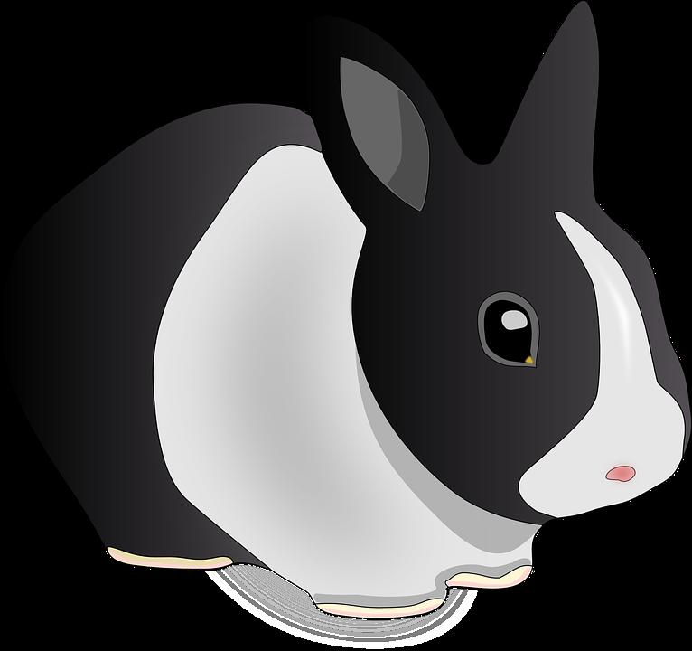 Woodland clipart vector. Bunnies gambar frames illustrations