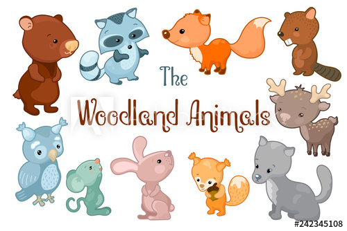 Woodland clipart vector. Animals on white background