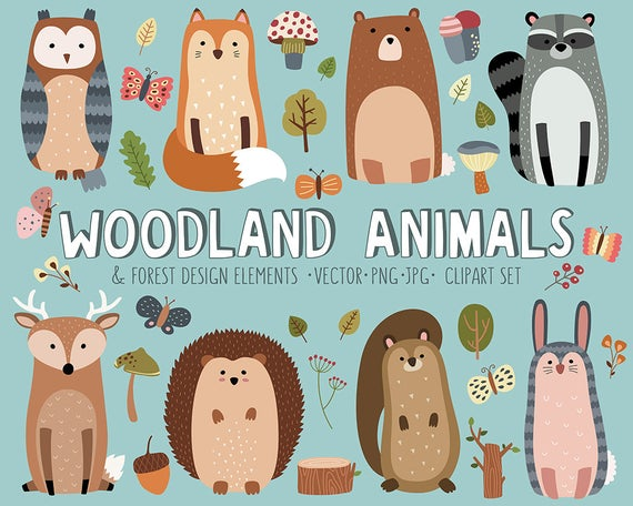 Woodland clipart vector. Set cute forest animals