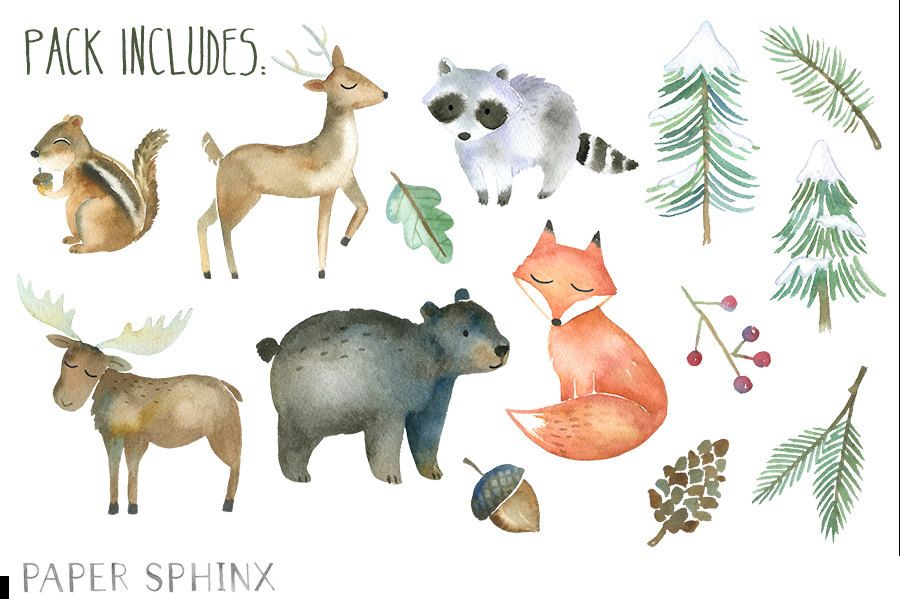 Winter animals forest . Woodland clipart watercolor