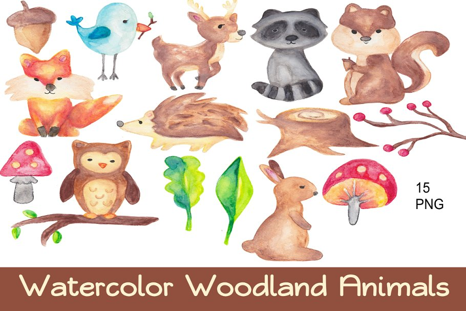 Woodland clipart watercolor. Animals clip art