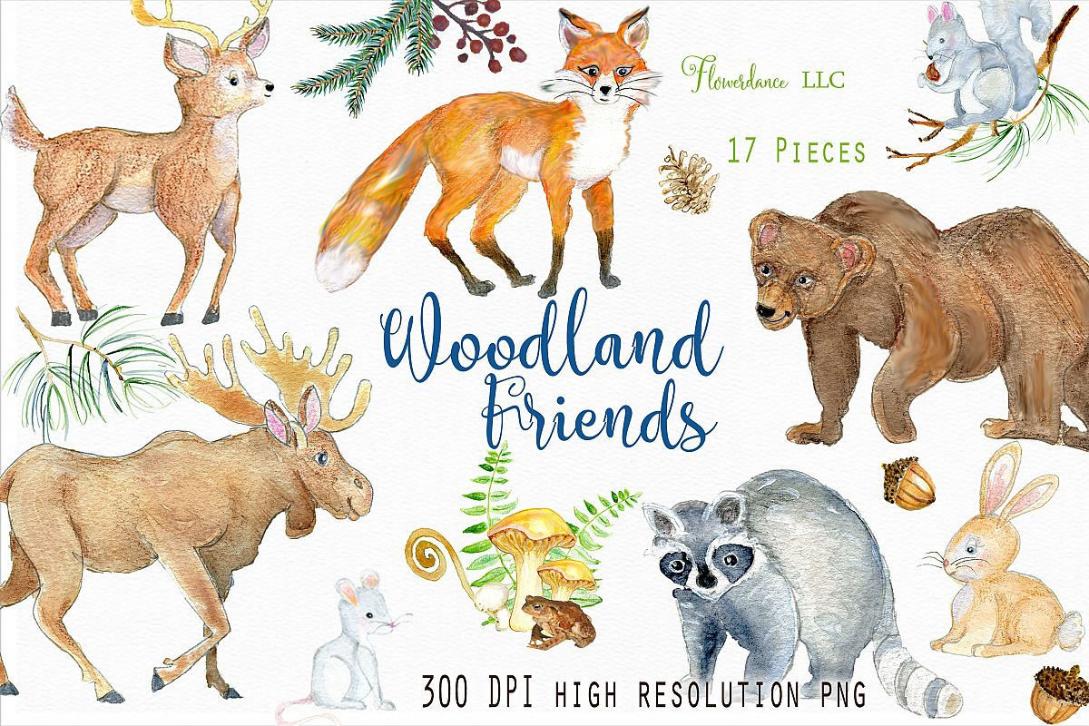Woodland clipart watercolor. Animals