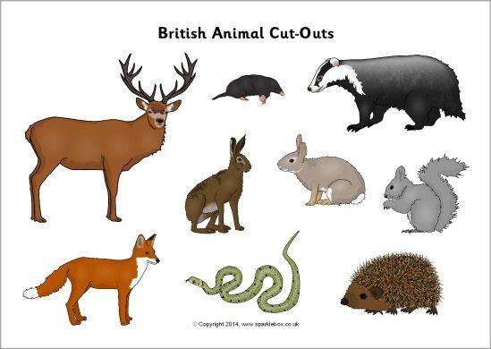Animal cut outs sb. Woodland clipart wildlife british
