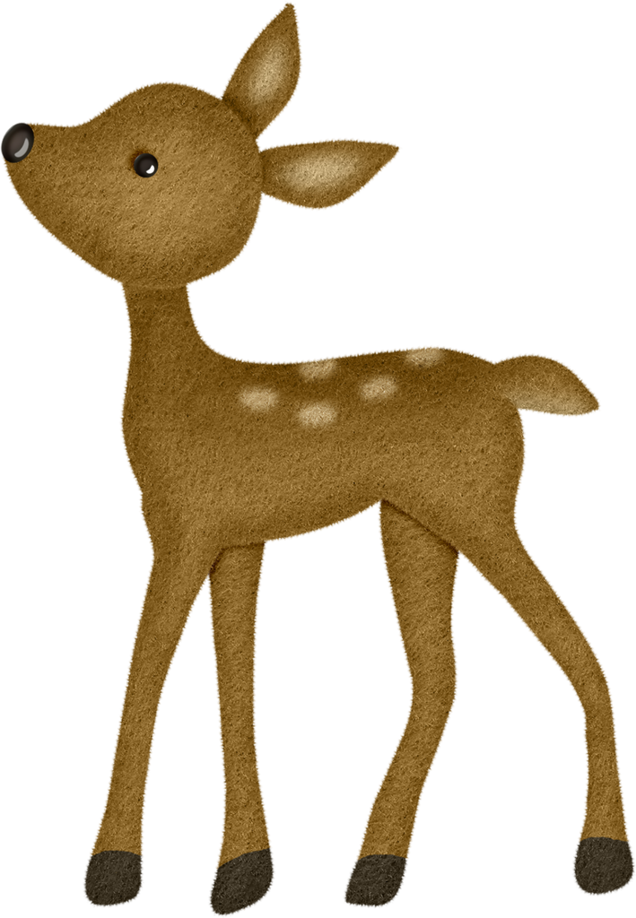Woodland clipart winter. Zoos and album