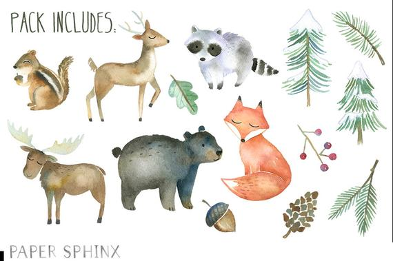 Animals watercolor forest fox. Woodland clipart winter