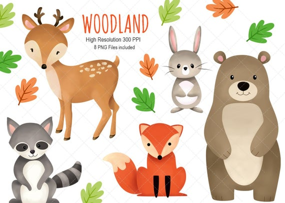 Clip art instant download. Woodland clipart woodland friend