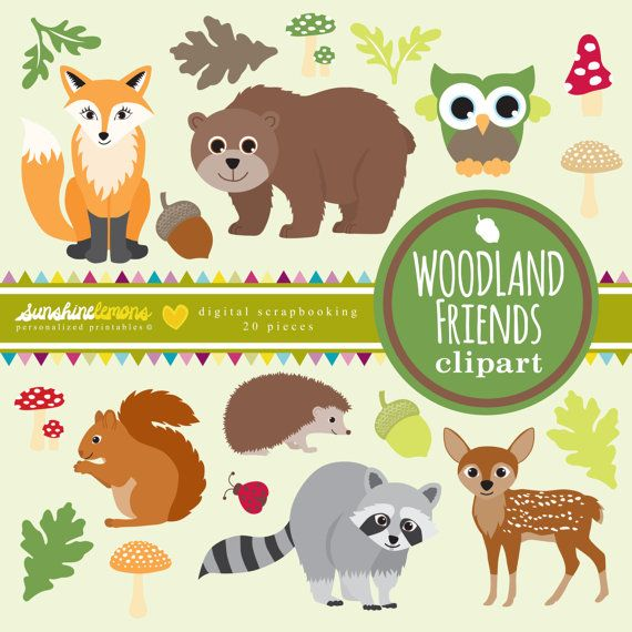 Woodland clipart woodland friend. Friends creatures