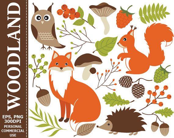 Woodland clipart woodland leaves. Digital fox squirrel owl