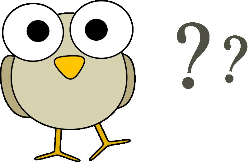 Words clipart quiz. Time sue hampton owl