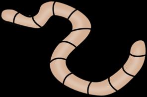 Worm clipart annelida. X free clip art