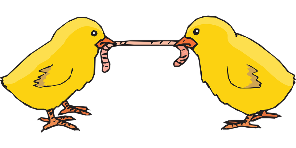Worm clipart bird. With png transparent images