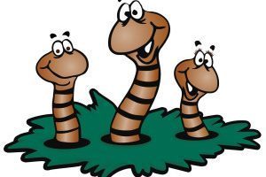 Worm clipart dirt clipart. Worms in portal
