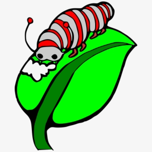 Worm clipart eating plant. Worms frames illustrations