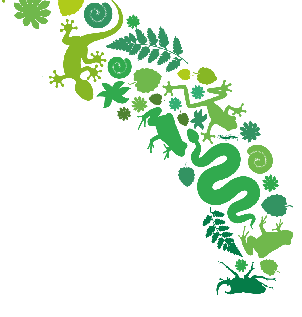 Worm clipart green thing. Planet free on dumielauxepices