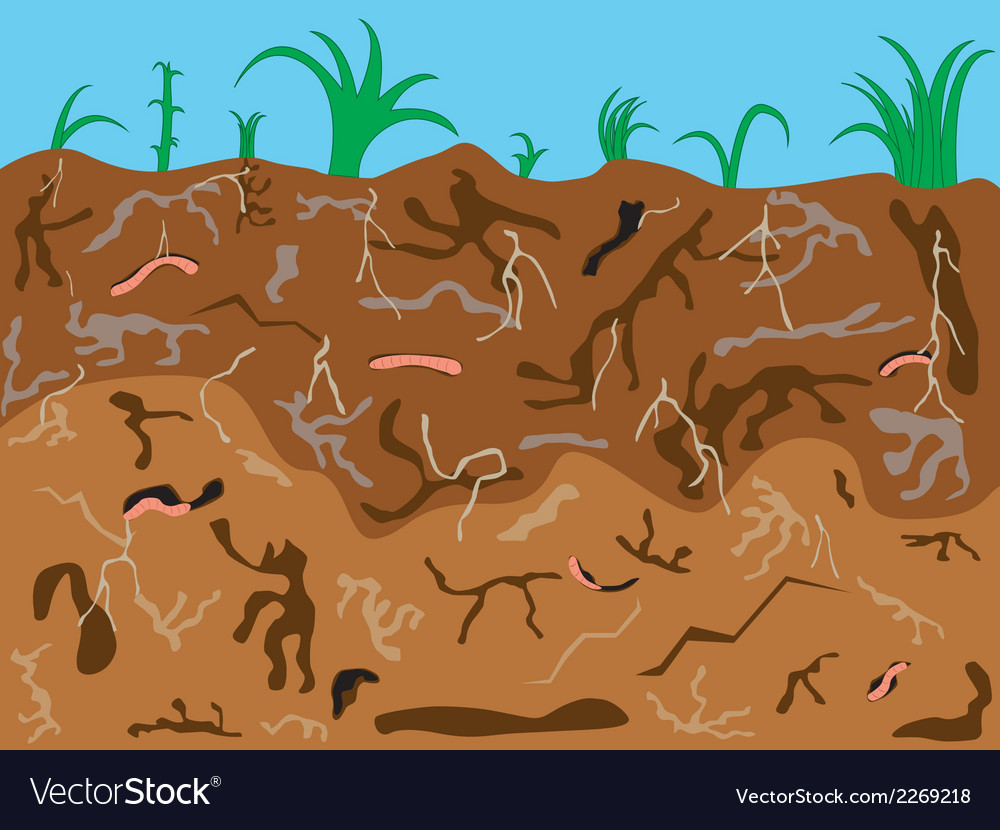Worm clipart ground. Free worms download clip