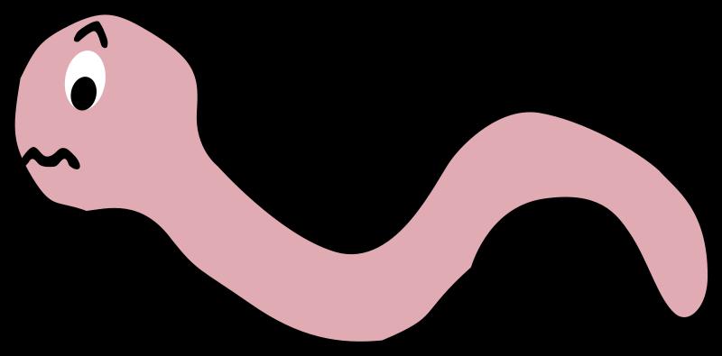Funny earthworm cartoon medium. Worm clipart pink worm