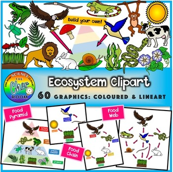 Worm clipart primary consumer. Ecosystem energy pyramid food