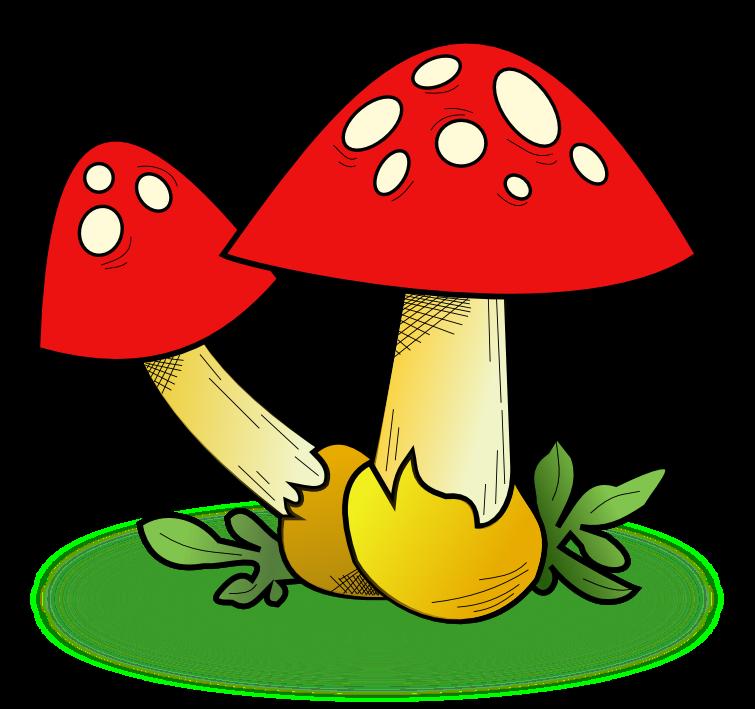Worm clipart short worm. Mashroom colorful mushroom free