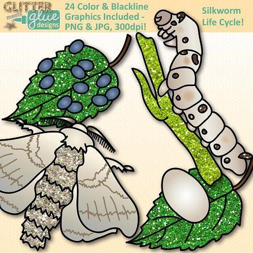 Mini beast silk life. Worm clipart silkworm