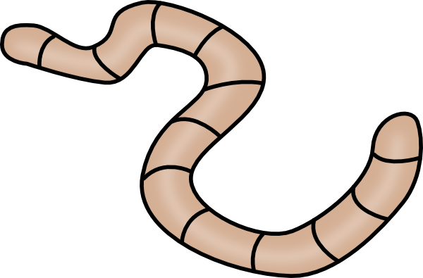 Worm clipart small worm. Worms png images free