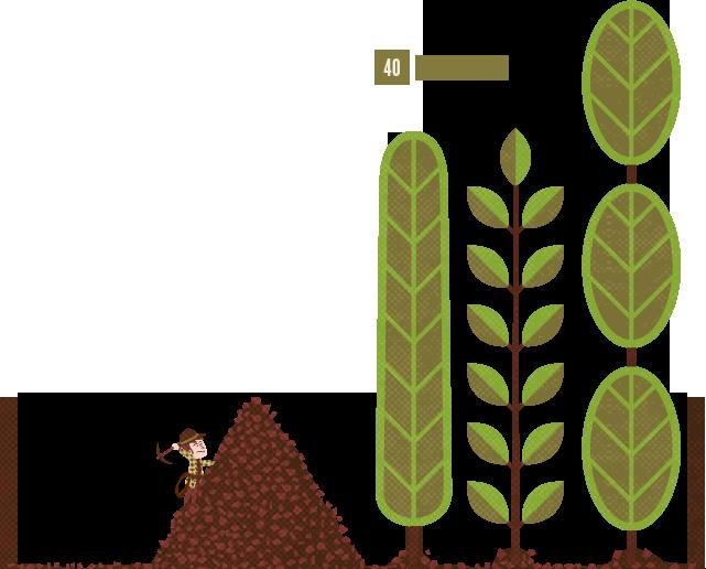 Worm clipart soil organism. Leaf mulch clipground living